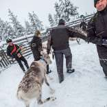 060118, Finland, Savukoski, Martti, Värriöjoki, Photo: Rostam Zandi. Many thank yous to: Hotelli Samperin Savotta.