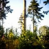 140710, Sundsvall.