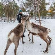 270214, Jukkasjärvi, Nutti Sami Siida, Photo: Rostam Zandi.